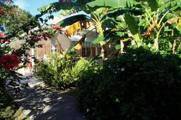 La villa guadeloupe au milieu de son jardin tropical for Jardin tropical guadeloupe