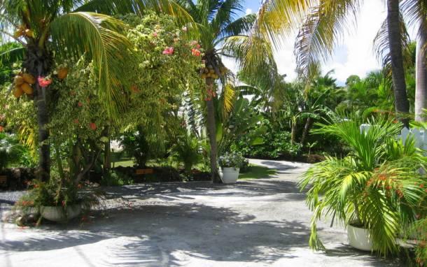 Location maison de vacances en Guadeloupe- le Golf 18 trous à proximité