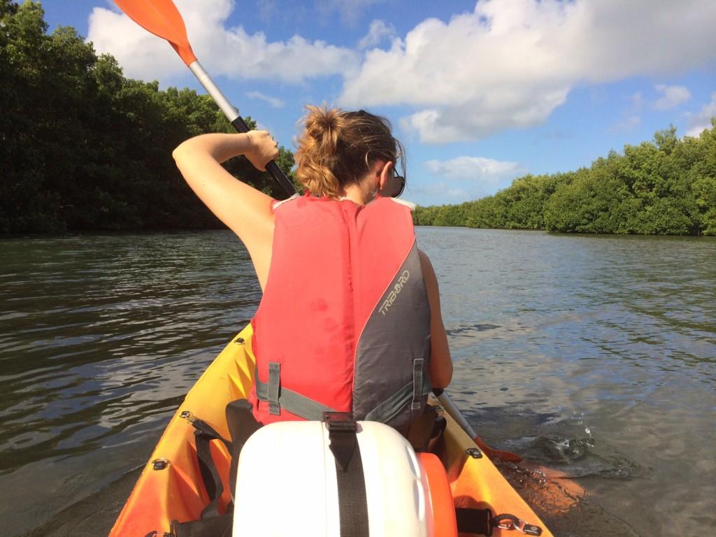 Visitez la mangrove en Guadeloupe à bord d'un kayak